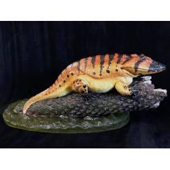 Eryops, Amphibian Model