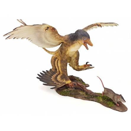 Microraptor hunting Eomaia, Diorama Brown