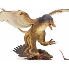 Microraptor jagt Eomaia, Diorama Braun