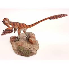 Velociraptor putzend, Dinosaurier Modell
