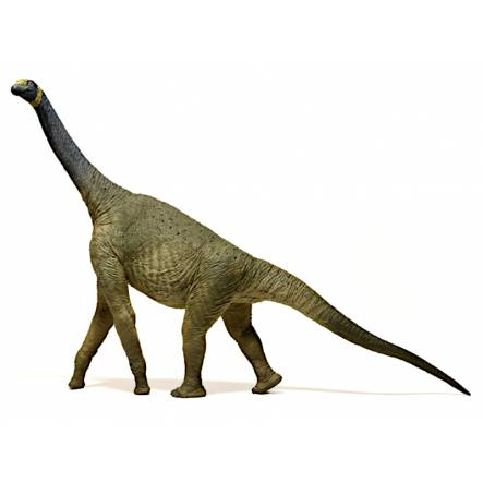 Atlasaurus, Dinosaur Figure by EoFauna