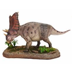 Chasmosaurus, Dinosaur Model by Shane Foulkes