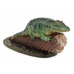 Eryops, Amphibian Model - green