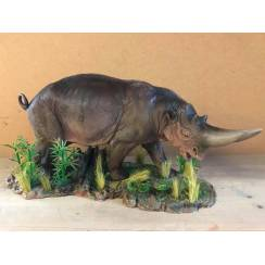 Arsinoitherium, Model by Sean Cooper