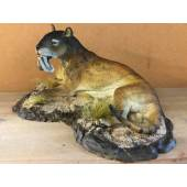 Thylacosmilus reclining, Model by Sean Cooper