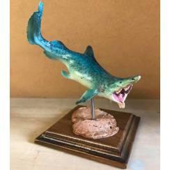 Parahelicoprion light blue, shark-like Fish Model