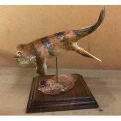 Kronosaurus brown, Marine Reptile Model