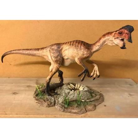 Oviraptor brown, Dinosaur Model