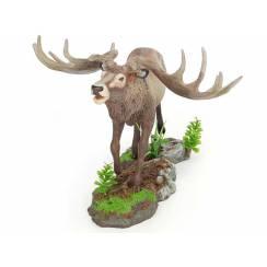 Megaloceros, Giant Elk Model