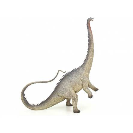 Diplodocus grey, Dinosaur Toy Figure by CollectA