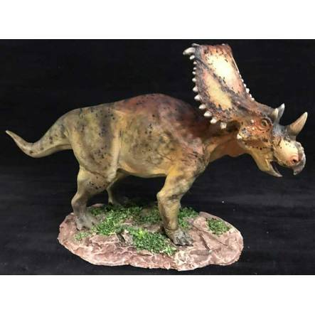 Chasmosaurus brown, Dinosaur Model