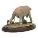 Platybelodon - bended trunk, Model by Sean Cooper