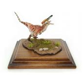 Austroraptor rötlich, Dinosaurier Modell von Alexander Belov