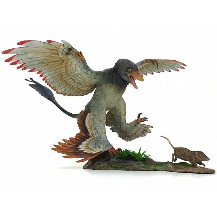 Microraptor hunting Eomaia, Dinosaurier Diorama, red wing tips