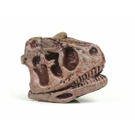 Carnotaurus Skull, Dinosaur Miniature Figure by Safari Ltd.