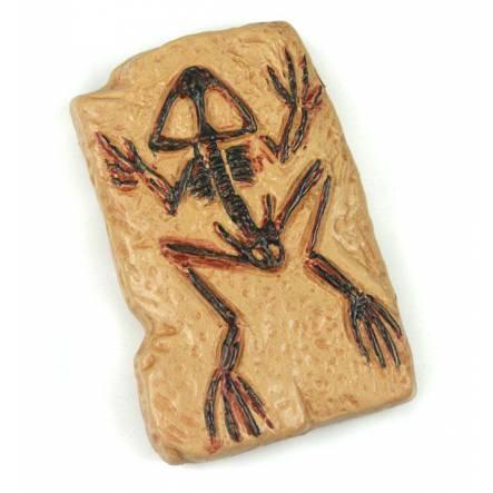 Fossil Frog, Miniature Figure by Safari Ltd.