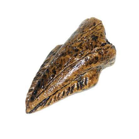 Thescelosaurus Claw, Dinosaur Replica by GeoWorld