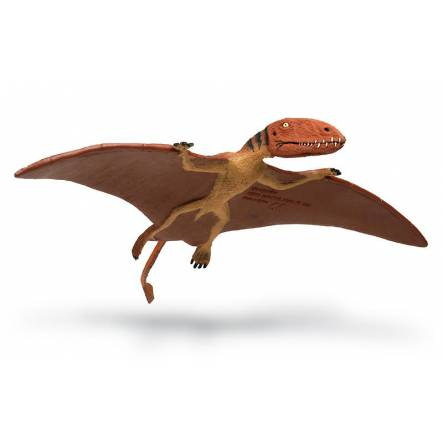 Dimorphodon, Pterosaur Figure by Safari Ltd.