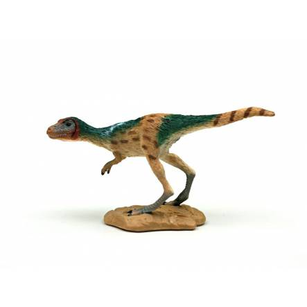 T.rex Juvenile, Dinosaur Toy Figure by CollectA