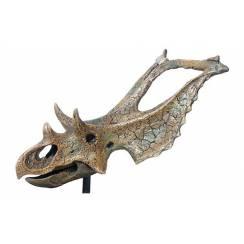 Chasmosaurus Schädel, Dinosaurier