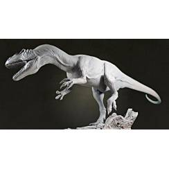 Allosaurus, Dinosaur Model Kit by Sean Cooper