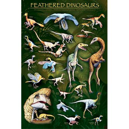 Feathered Dinosaurs, Dinosaurier Poster