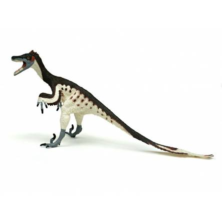 Velociraptor feathered, Dinosaur Toy Figure of the Carnegie Collection