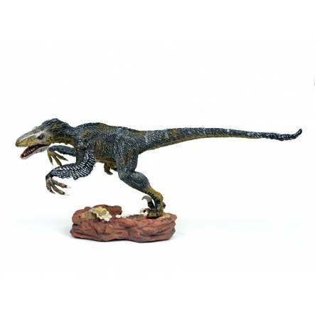 Utahraptor 'Wind Hunter', Dinosaur Model by Rebor