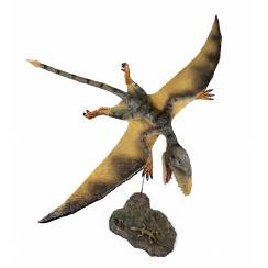 Dimorphodon 'Judy' flying, Pterosaur Model by Rebor