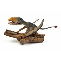 Dimorphodon 'Punch' sitzend, Flugsaurier Modell von Rebor