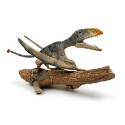 Dimorphodon 'Punch' sitting, Pterosaur Model by Rebor
