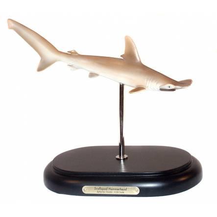 Bogenstirn-Hammerhai, Modell von Favorite Co. Ltd.