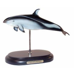 Pacific White-Sided Dolphin by Favorite Co. Ltd.