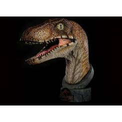 Velociraptor Bust, by Chronicle Collectibles