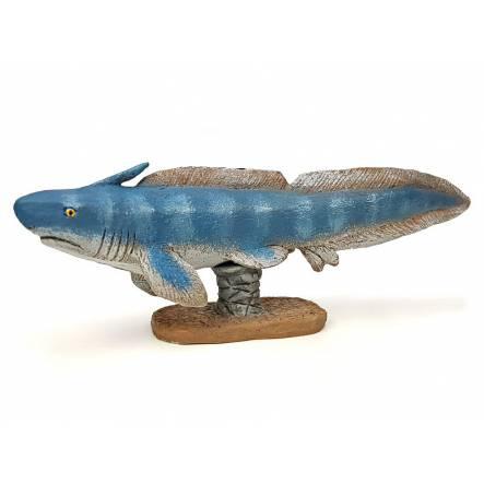 Xenacanthus, early shark