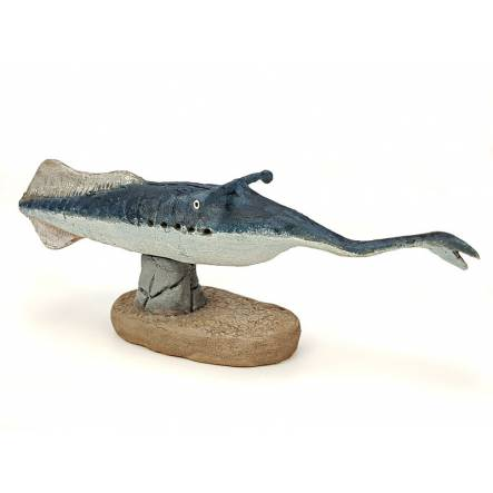 Xenacanthus, early shark