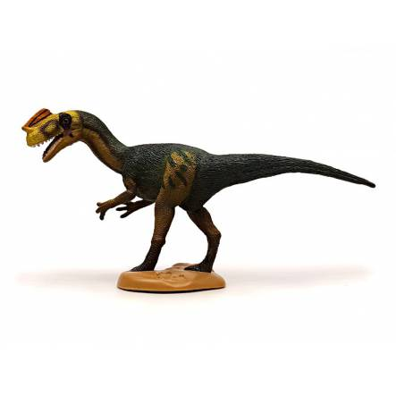 Proceratosaurus, Dinosaur Toy Figure by CollectA