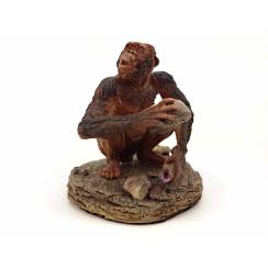 Australopithecus sitting, Prehistoric Man
