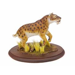 Megantereon, Sabre-toothed Cat - spotted
