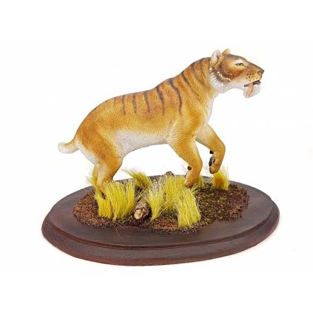 Megantereon, Sabre-toothed Cat - striped