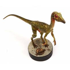Compsognathus, von Chronicle