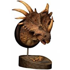 Styracosaurus, Dinosaur Bust - brown - by Damtoys