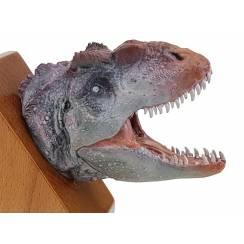 Allosaurus, Dinosaur Head Model