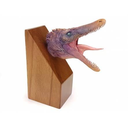 Austroraptor, Dinosaurier Kopf-Modell