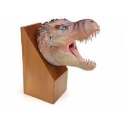 T. rex, Dinosaur Head Model