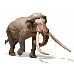 Palaeoloxodon antiquus, prehistoric Elephant Figure by EoFauna