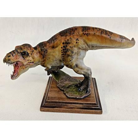 T. rex brown, Dinosaur Model