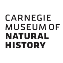 Carnegie Collection