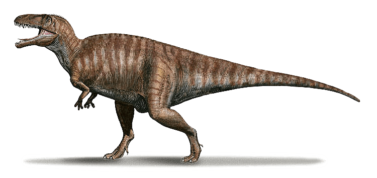 Wissenswertes über Acrocanthosaurus