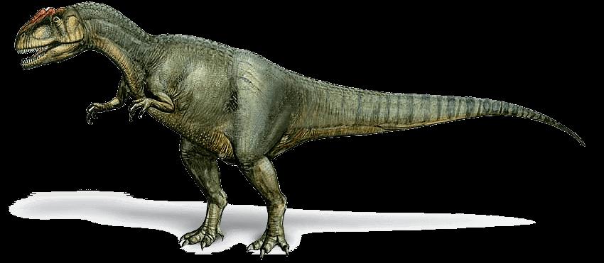 Wissenswertes über Allosaurus